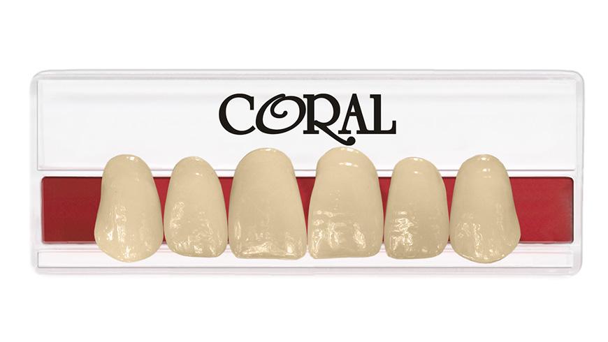 0002 plaqueta coral